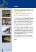 NR 15 | ApRil 2013 - Ravon - Page 3