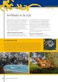 NR 15 | ApRil 2013 - Ravon - Page 6