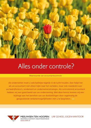 Accountancy - controle