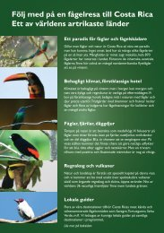 Beskrivning - pdf - birdsafarisweden.com