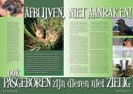Ook pasgeboren zijn dieren niet zielig - Dierenambulance Nijmegen