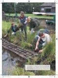 Staatsbosbeheer ziet mogelijkheden voor ... - Biodiversiteit.NL - Page 6
