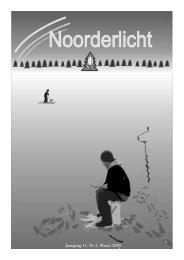 Noorderlicht - Nederlandse Vereniging in Finland