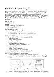 Billedbeskrivelse og billedanalyse - Inerisaavik
