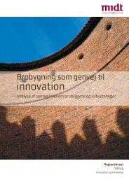 Brobygning som genvej til innovation - Region Midtjylland