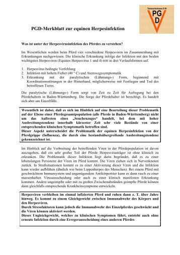 PGD-Merkblatt zur equinen Herpesinfektion