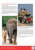 Indien med reseledare - DTF-Travel - Page 6