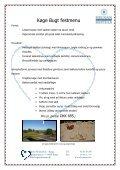 Selskabsmappe 2012 - Helnan International Hotels - Page 3