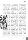 Maart - SAP - Page 5