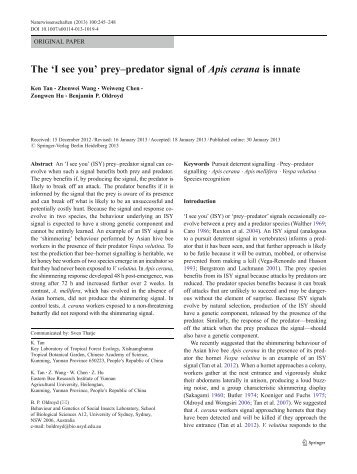 The 'I see you' prey–predator signal of Apis cerana is innate