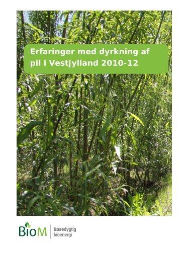 Erfaringer med dyrkning af pil i Vestjylland 2010-12 - AgroTech