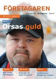 Dalaföretagaren nr.3 2011 - Reporter AB
