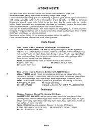 Katalog Heste Ribe Dyrskue 2008