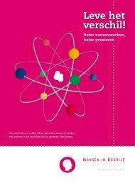 Brochure Leve het Verschil - Werken met Teamrollen
