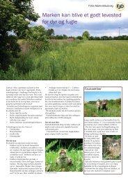 Hjælp til markens dyr og fugle - Fjd