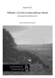 Pilbladet 1 (fd del av Sallerup 180:36) - Sydsvensk Arkeologi AB