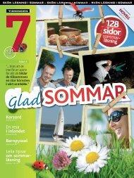 Sommar - Webben 7