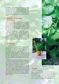 1-16 Matkultur - Martha - Page 4