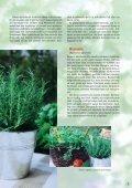1-16 Matkultur - Martha - Page 7