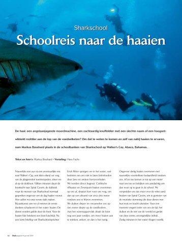 Schoolreis naar de haaien Schoolreis naar de haaien - thomhard.com