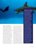 Schoolreis naar de haaien Schoolreis naar de haaien - thomhard.com - Page 2