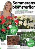 Nye lave sorter af klematis, som blomstrer - Ellengaard - Page 6