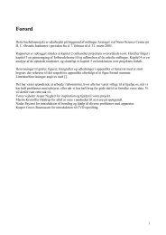 PDF file (2MB) - Niels Bohr Institutet