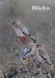 2008 nr 3 - Gotlands Ornitologiska Förening