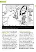 Läs pdf. - Geologiska föreningen - Page 4