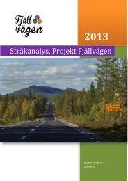 Stråkanalys, Projekt Fjällvägen