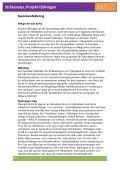 Stråkanalys, Projekt Fjällvägen - Page 6