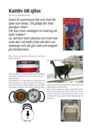 katt i båt.pmd - Ragnhild Solvika