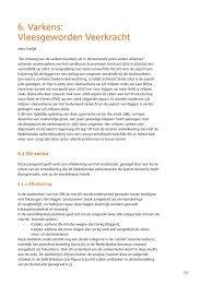 'Varkens: Vleesgeworden Veerkracht', in - Frisse Blik