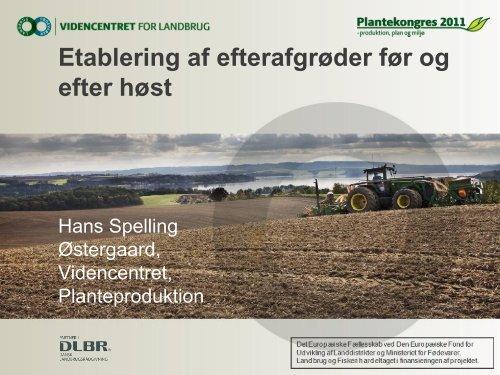 Etablering af efterafgrøder før og efter høst (indlæg på ...