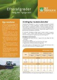 Efterafgrøder - DLF-TRIFOLIUM Denmark