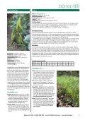 Grönsaker, blommor redskap & tillbehör - Olssons Frö - Page 5