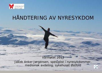 Behandling av kronisk nyresvikt i ... - Sykehuset Østfold