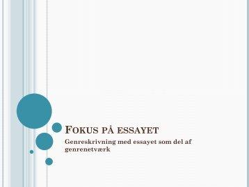 Fokus på essayet - Raffaele Brahe-Orlandi