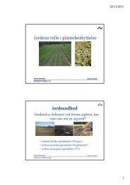 Jordens rolle i plantebeskyttelse Jordsundhed