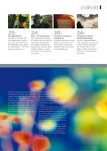 MiljøDanmark nr. 2 2008 - Miljøministeriet - Page 3