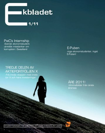 PwC's Internship E-Puben TREDJE DELEN AV ... - HHUS