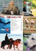 Djurens Intelligens - Djurskyddet Sverige - Page 3