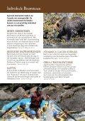 Brochure (1.2 Mb) - Individuele reizen - Page 6