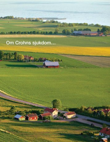 2011-06-30 Om Crohns sjukdom.indd - Magakuten