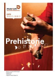 Museum voor Natuurwetenschappen - Prehistorie - Do It Yourself