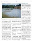 Het Eeuwige Landschap, deel 2, Natuurontwikkeling ... - De Warande - Page 7
