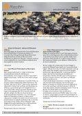 Safari på Serengeti - Når gnuerne kælver - MarcoPolo - Page 2