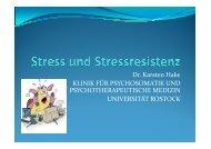 Vorlesung Stress und Stressresistenz 2011 Hake - Klinik und ...