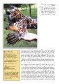 Porselein op eb, eWh of beide - Tuinvee - Page 3