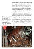 Porselein op eb, eWh of beide - Tuinvee - Page 6